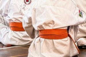 karate-1665606_1280